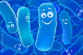probiotics fibromyalgia